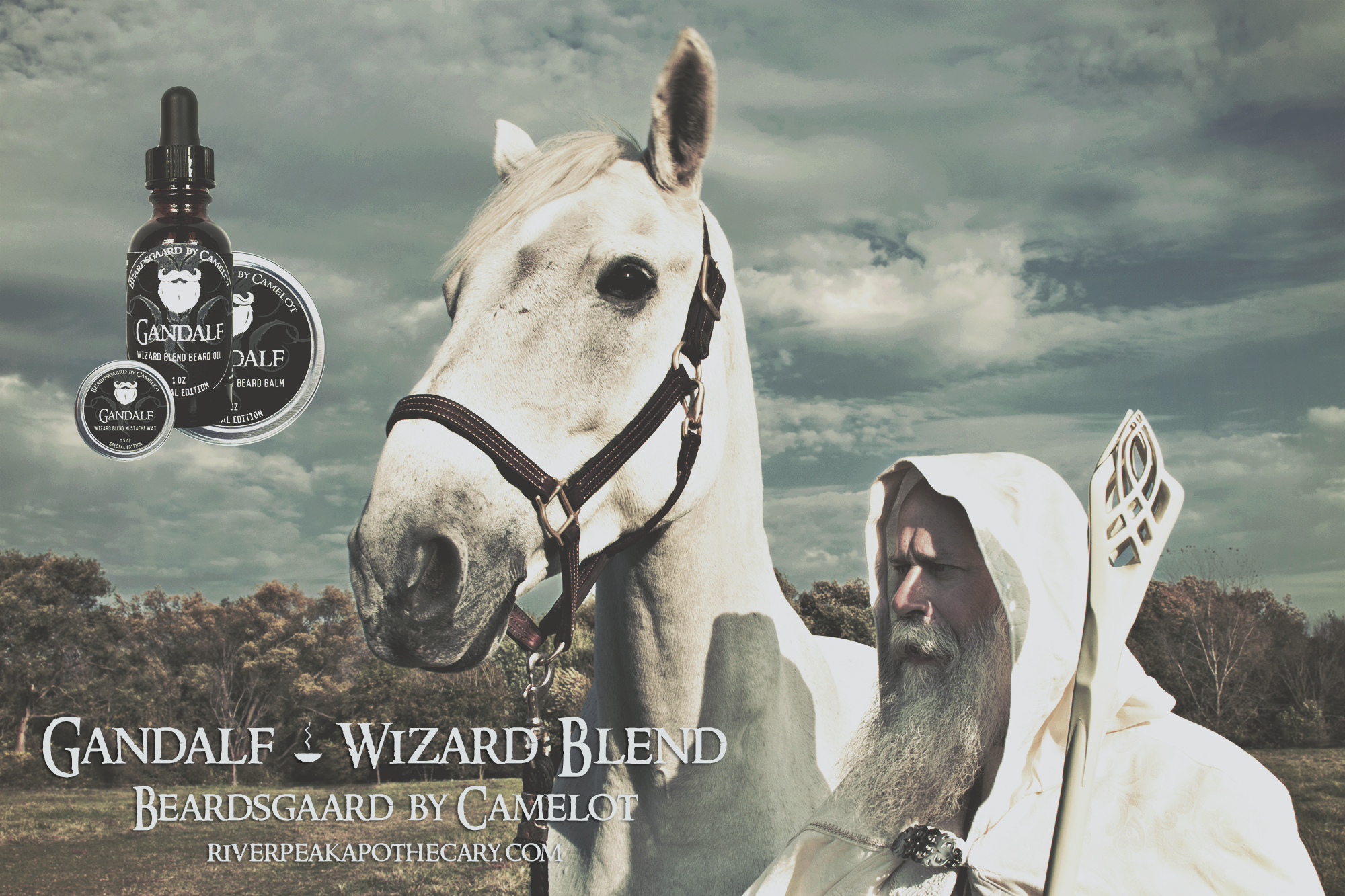 20151019-024-Gandalf IRL-Beau Cheval Farm
